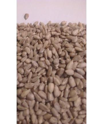 Graines de tournesol - boîte 130 g