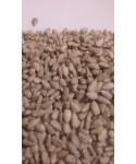 Farine de blé T80 bio sur meules (25 kg)