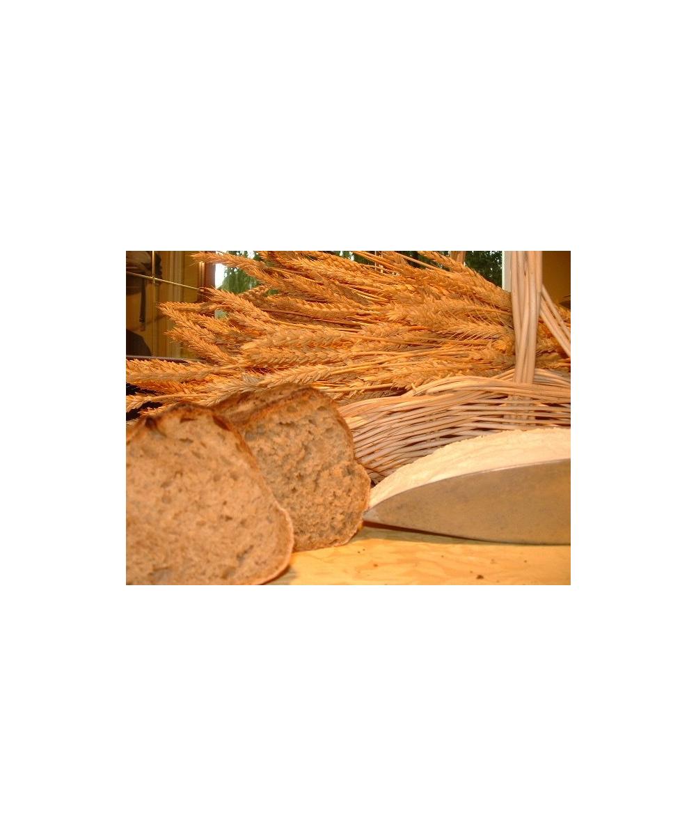 Farine de blé T150 5 kg