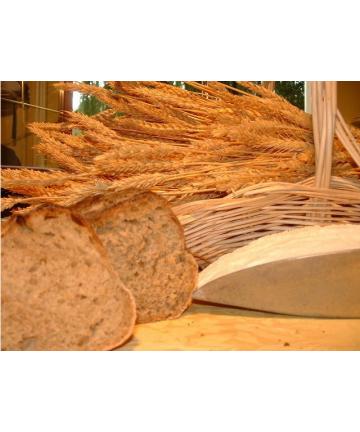 Farine de blé T150 Bio sur Meule 25 kg